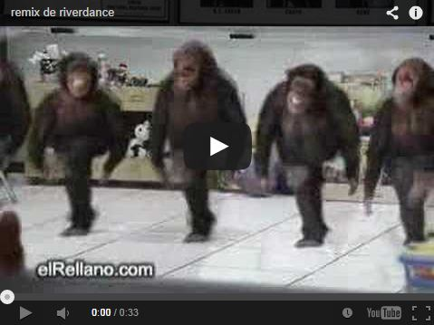 Clip vidéo river dance version primate !
