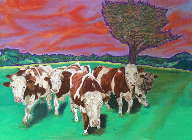 Vaches en pâture, tableau réalisé aux pastels par Gérard Goron Tri Yann